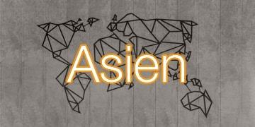 Reiseadapter und Reisestecker für Asien